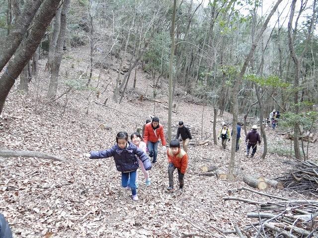 林内の探索、シイタケが誰かに食べられて、収穫できず。