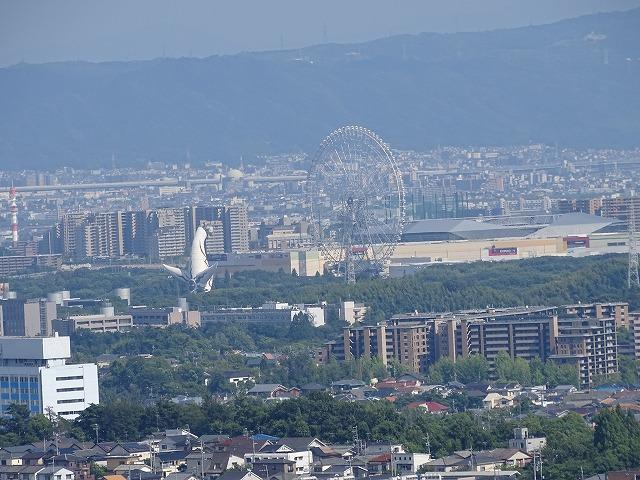 ハルカに見える太陽の塔、横には大観覧車が見えます。
