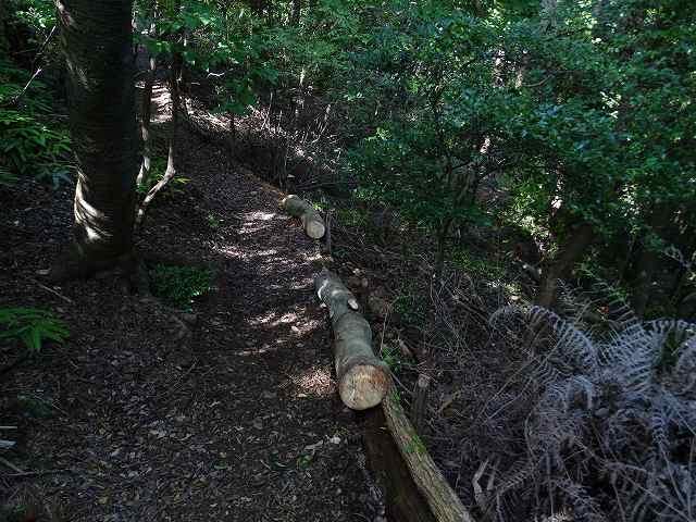 道補修 ソヨゴの掛かり木を横木に転用