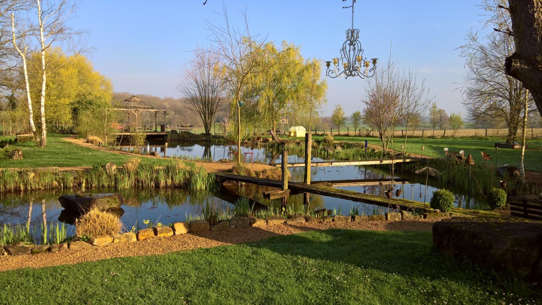 Märzstimmung über dem Teich