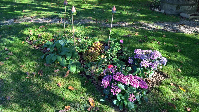 Das neue Beet unter dem Nussbaum kriegt Zuwachs von zwei Hortensien
