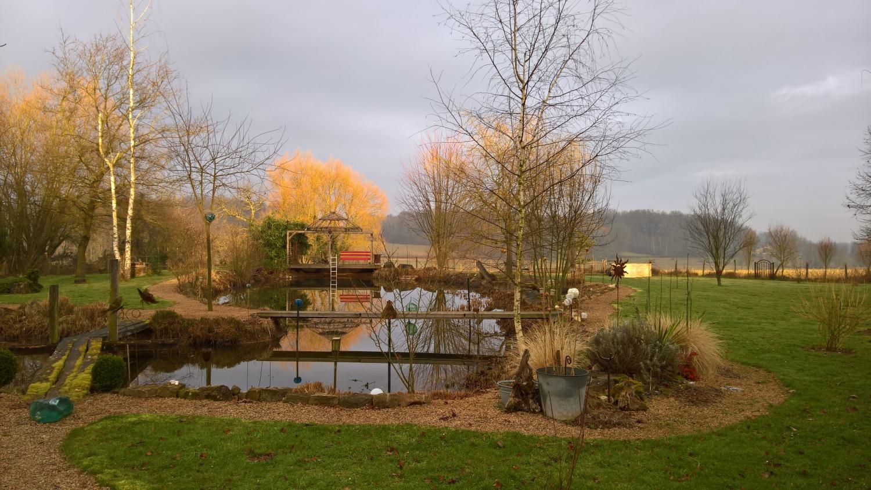 Morgenstimmung über dem Teich