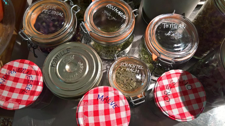 Wir sammeln Kräuter vom eigenen Garten und von Freundesgärten für Tee und Reserve für den Winter