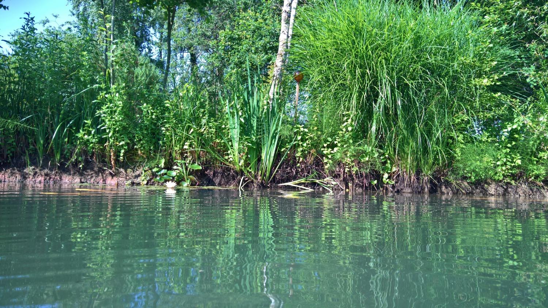 Vom Wasser aus gesehen