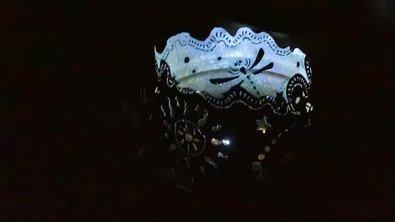 Die Libellen auf der Lichtertonne