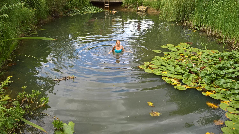 Nie dagewesener Tiefstand im Teich