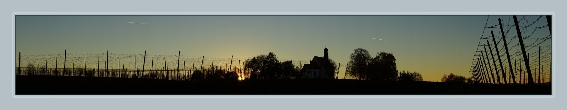 Hopfengarten Panorama Bild 12