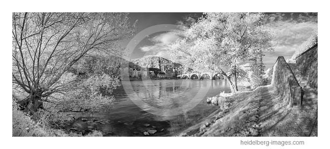 Archiv-Nr. h2014158 / Heidelberg, Neckarufer und Altstadt