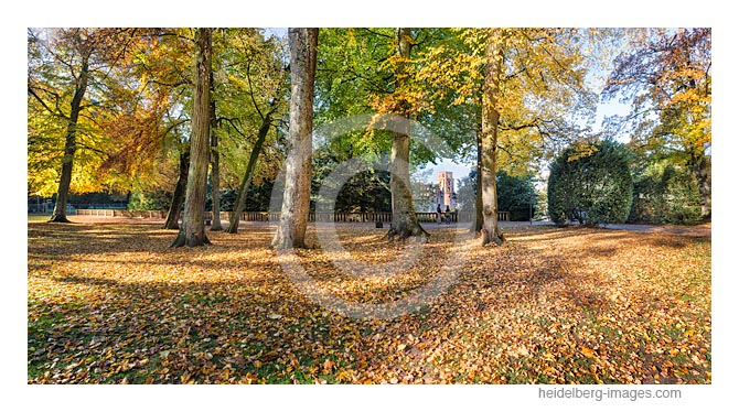 Archiv-Nr. hc2016145 / Herbststimmung am Heidelberger Schloss