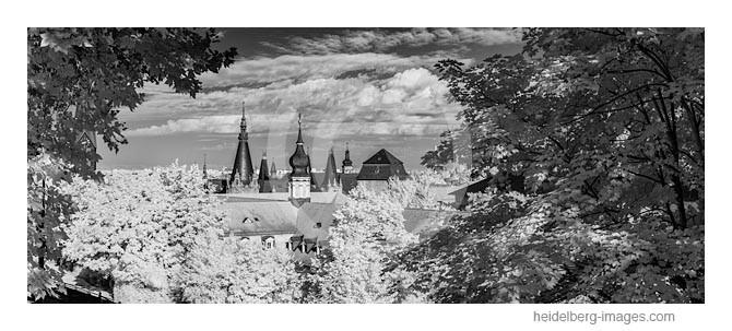 Archiv-Nr. h2012137 | Blick vom Hexenturm auf