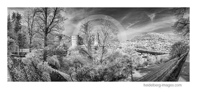 Archiv-Nr. h2015133 / Heidelberger Schloss