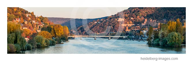 Archiv-Nr. hc2016148 | Heidelberger Neckarufer im Herbst