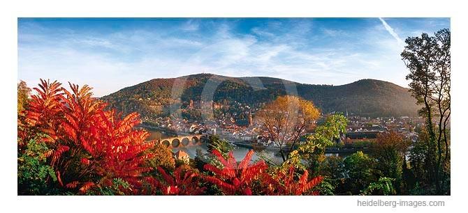 Archiv-Nr. hc2005167 / Herbstlauf am Philosophenweg mit Blick auf Heidelberg