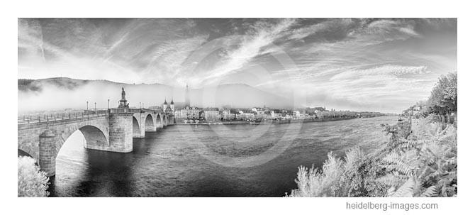 Archiv-Nr. h2014157 | Heidelberg-Ansicht vom Ufer aus