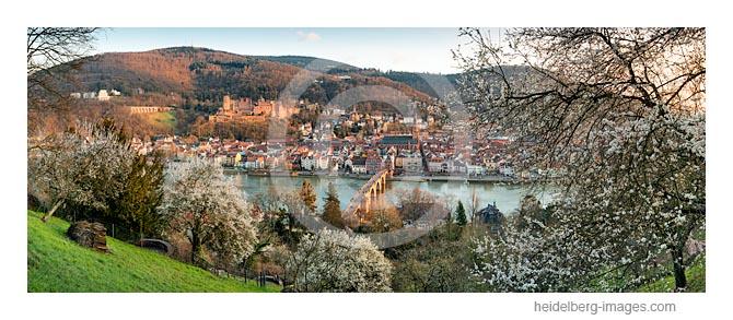 Archiv-Nr. hc2016106 / Heidelberg im Frühling
