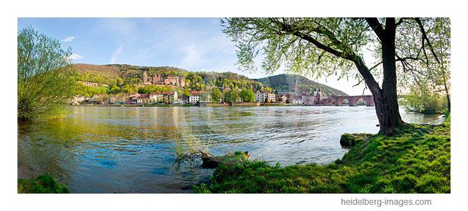 Archiv-Nr. hc2011198 | Neckarufer an der Alten Brücke
