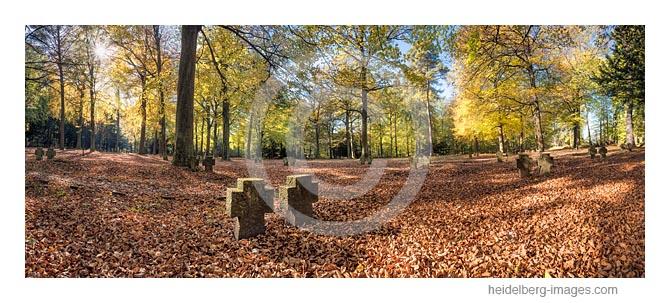 Archiv-Nr. hc2017164 | Ehrenfriedhof im Herbst