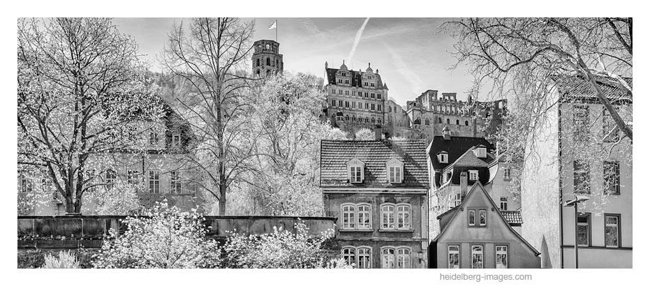 Archiv-Nr. h2015122 | Heidelberg, Häuserfassaden der Altstadt mit Schlossblick