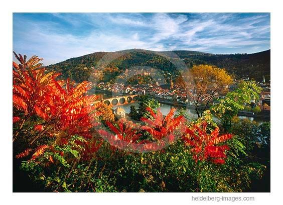 Archiv-Nr. hc2005166 | Herbstlicher Blick vom Philosophenweg