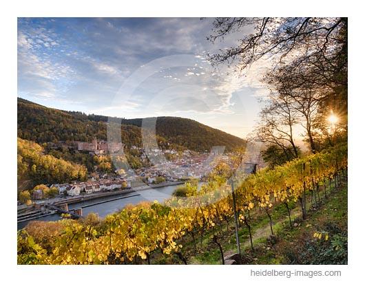 Archiv-Nr. hc2020168 | Blick aus den Weinbergen auf Heidelberg