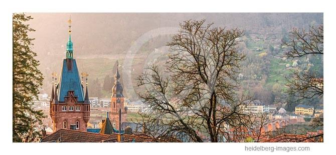 Archiv-Nr. hc2014143 / Blick über Baumkronen auf den herbstlichen Philosophenweg
