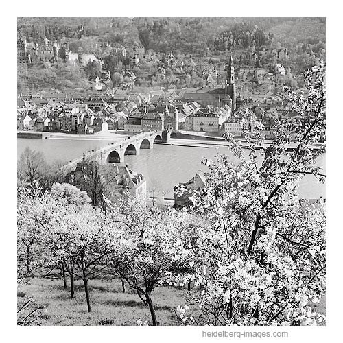 Archiv-Nr. 9_12H / Alte Brücke im Frühling