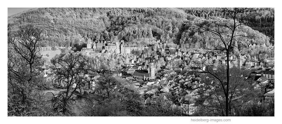 Archiv-Nr. h2015121   Heidelberger Altstadt im Frühling