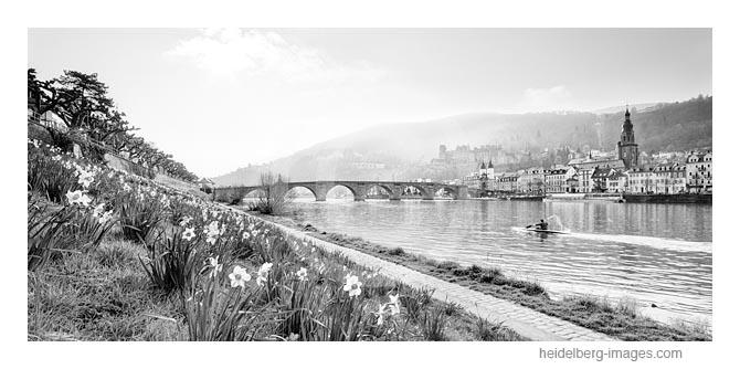 Archiv-Nr. h2016111 / Blick über den Neckar auf die Altstadt im Frühling