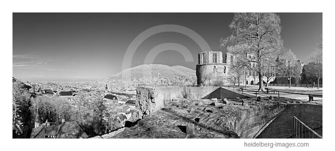Archiv-Nr. h2012114 | Heidelberger Schloss und Altstadtblick