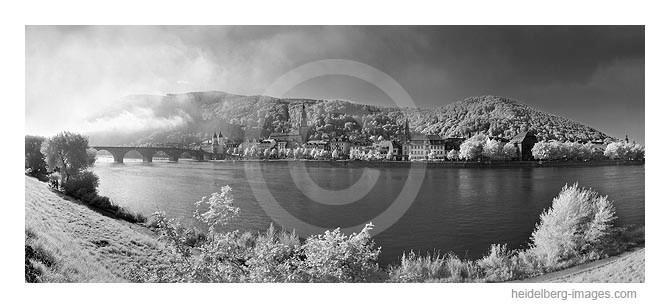 Archiv-Nr. h2000150   Heidelberg, Altstadtansicht