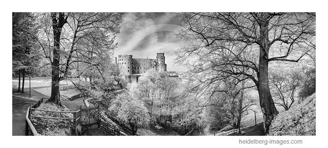 Archiv-Nr. h2015137 | Heidelberger Schloss im Frühling