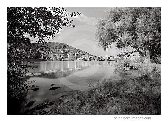 Archiv-Nr. h2009194 | nördliches Neckarufer