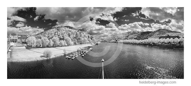Archiv-Nr. h2015131   Neckarufer bei Heidelberg