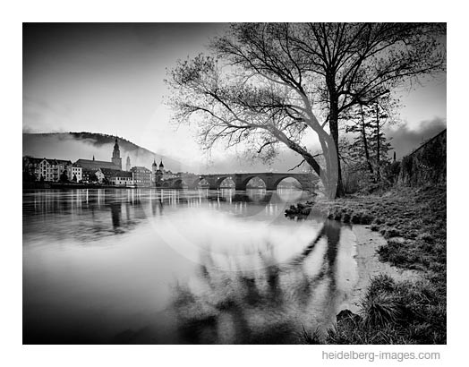 Archiv-Nr. h2014178 | Heidelberg, Neckarufer und Alte Brücke
