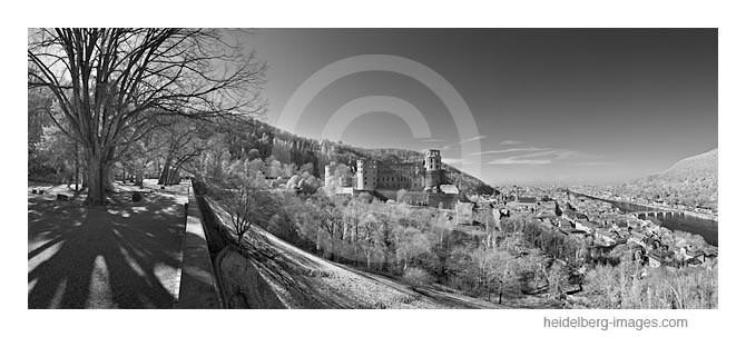 Archiv-Nr. h2012120 | Heidelberger Schloss, Altstadt und Neckar