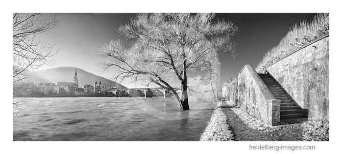 Archiv-Nr. h2015102 | Heidelberg, Neckarufer und Altstadtblick