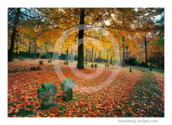 Archiv-Nr. hc2008136 / Ehrenfriedhof Heidelberg