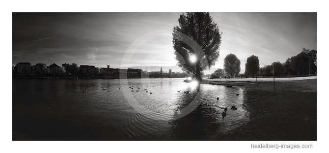 Archiv-Nr. hc2009221 | Wasserschachtel im Sonnenuntergang