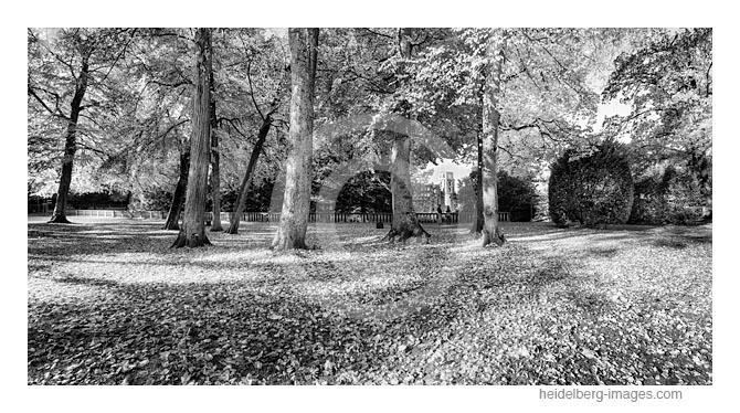 Archiv-Nr. h2016145 | Schlossterrasse im Herbstkleid