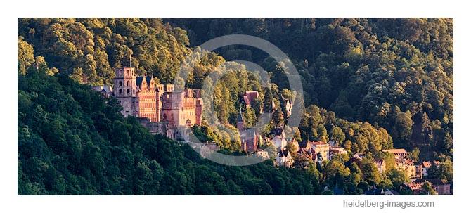 Archiv-Nr. hc2016120 / Heidelberger Schloss