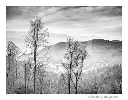 Archiv-Nr. h2015105 | Heidelberg, Blick vom Wald auf das Schloss und die Altstadt