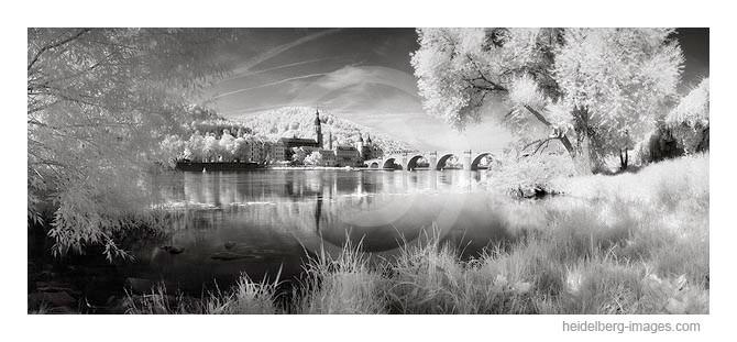 Archiv-Nr. h2009193 | Neckarufer und Alte Brücke