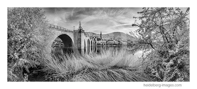 Archiv-Nr. h2016147 | Alte Brücke und Neckarufer