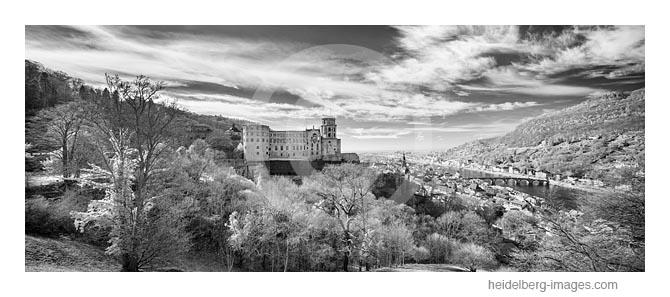 Archiv-Nr. h2019108 / Heidelberger Schloss