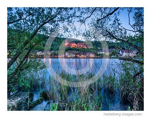 Archiv-Nr. hc2016115 | Blick vom Neckarufer auf die Altstadt mit Schloss
