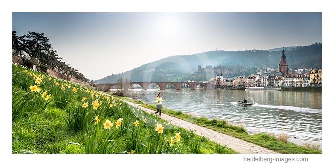 Archiv-Nr. hc2016111 | Frühling am Neckarufer