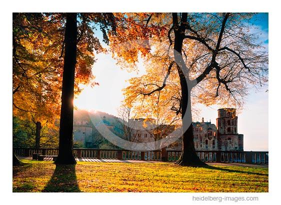 Archiv-Nr. hc2006171 / Auf dem Heidelberger Schloss im Herbst