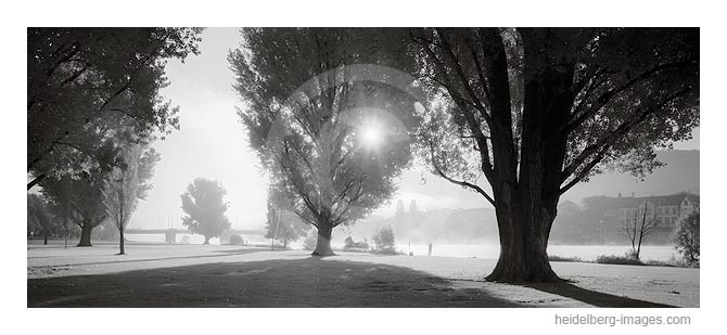 Archiv-Nr. h2005151 | Morgenstimmung an der Neckarwiese