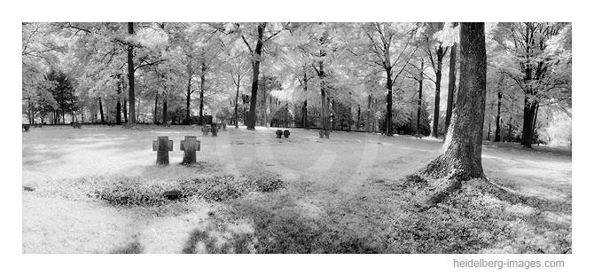 Archiv-Nr. hc2008109 / Ehrenfriedhof