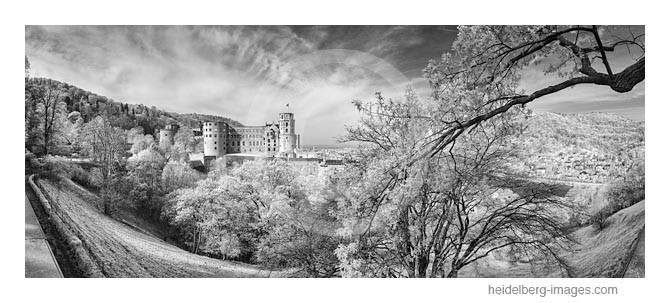Archiv-Nr. h2015123 / Heidelberger Schloss